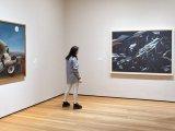 MoMA prkosi Trampu